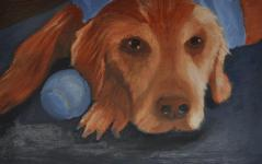 One of my first oil painting projects at Emory & Henry College. The assignment was to paint something using only two main colors (we were allowed to mix each with white or black in order to create lighter and darker shades). I chose my 14-year-old golden retriever, Maggie, as the subject for this piece. Finished within 16 hours.